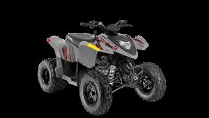 Polaris Phoenix® 200 2020